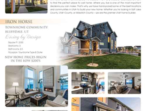 EDGE Homes Flyer Design