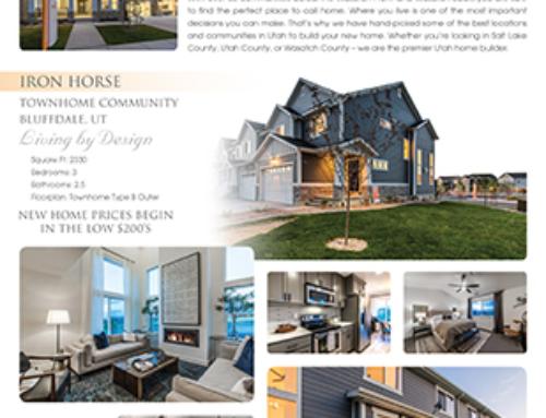 EDGE Homes Flyer Design